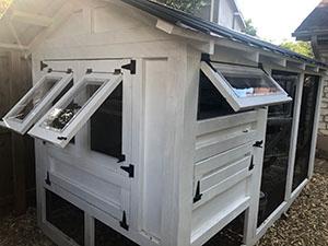Austin Chicken Coop Windows