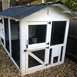 Custom Chicken Coop Build