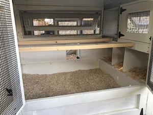 Deep Litter Henhouse Setup